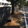 2020.2.8 PART Ⅳ(最終章)瀬戸内と四国一周そして東海道の旅(自転車日本一周175日目)