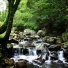 自然を巡る(くらがり渓谷)