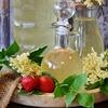 Holunder(ニワトコ)の効能と毒性、Holunderblütensirup(ニワトコシロップ)はやっぱり不健康?