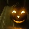ハロウィンかぼちゃはあっという間に腐る