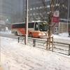 初雪・・・!?
