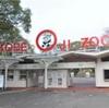 パンダに会える 神戸市王子動物園