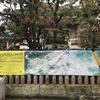 2019年4月27日(土)/永青文庫/東京都庭園美術館/Bunkamura ザ・ミュージアム/他