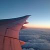 コードシェアフライトでヒューストンへ。NH176(成田→ヒューストン)エコノミークラス搭乗記