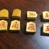 能登ごいた保存会東京支部例会『第七回東京支部大会』に出場しました