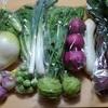 食べチョクで野菜をお取り寄せしてみたよ【熟女の野菜生活】