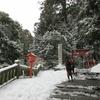 箱根神社で節分祭に参加しました。👹