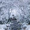 浄住寺の雪景色