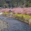 空から日本を見てみよう ― 伊豆熱川~稲取~河津 ―