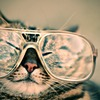 【30代のメンズファッション】「メガネ男子」に俺はなる!TPOに合わせた「メガネ」の使い分けの話