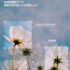 『Picture This』花の名前を一瞬で教えてくれるアプリを試してみた!