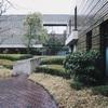東京上野で展覧会をハシゴ!【ブリューゲル展・プラド美術館展・常設展・マーグ画廊展】