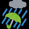 豪雨の日とりあえずコレを履くべし