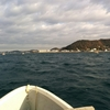 葉山オオモリボートで釣り🐥 真鯛!イナダ!シイラ!カワハギ!!!🌺 17年11月。