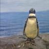 安心丸男(8)〜 ペンギンが見つめる中〜