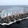 ●中国漁船は、見かけたら、即、駆除すべし。でないと、一気に増えてしまう。