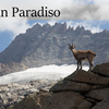 【イタリア4000m峰】 グラン・パラディーゾ登山【後編】