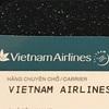 ANAプラチナメンバーのスカイチームのベトナム航空での威力とは?