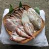 【ふるさと納税】島根県浜田(はまだ)市「美味しい魚4種盛り」(訳あり品付)が届きました〜! 静岡県西伊豆町の規格外のお魚の干物どっちがオススメ?