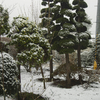 4月4日、春になったのに雨降りから雪降りに変わった