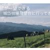 【函館】函館ドライブ〜岱牧場展望台の紹介〜