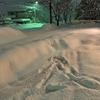 富山県、雪で大変!