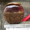 中ケラの金魚鉢を掃除する