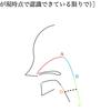【ハイトーンボイス】【ミックスボイス】【発声】喉の筋肉の役割と鍛え方
