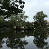 石神井川を歩く その2 石神井公園から水枯れる(ぬ)まで
