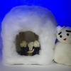 2月15日は「かまくらの日」~横手の雪まつり2017!~