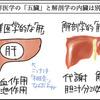 耳管障害③~鍼治療(東洋医学)編~
