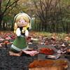 笛吹市 金川の森公園 小春日和に誘われて 紅葉狩り