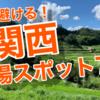 【密回避】関西の穴場観光スポット7選