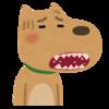虫歯になりやすい意外な原因3つ。歯磨きでダメなら〇〇菌を使え!