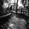 生駒山上へ自宅からトレイルラン #2