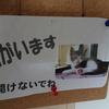 猫さんが安全に快適に暮らせますように