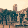 英単語帳の学習方法|私はこれで京大に合格した!