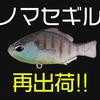 【DUO】毎回即完の最強ブルーギル系ワーム「ノマセギル」通販サイト入荷!