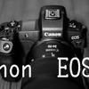【カメラ】α7Ⅲを売却しEOS Rを今更買った件