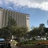 InterContinental Grand Stanford Hong Kongの屋上プールは12月でも入れる。プレミアフルハーバービューにアップグレード インターコンチネンタル香港