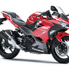 Kawasaki Ninja 250 / Ninja 250 KRT EDITION