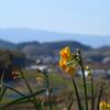 奈良の旅~なんとなく飛鳥に行ってきた~