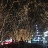 【2017年】仙台三大祭りの一つ「光のページェント」が人生最高のイルミネーションだった【期間・点灯時間】