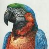3色のペンだけで描ける!~オウムの描き方~