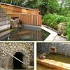 洞窟風呂と展望風呂のみとろ荘