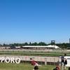 【猛暑】2018年も札幌競馬場に行ってきた【強風】