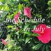 7月の予定/和歌山市、岩出市