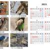 今年撮った野鳥の写真で2021年卓上型カレンダー作成。(CubePDF使用)