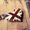 イギリスでベッドバグと戦った日々