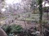 千駄木 ~ 須藤公園